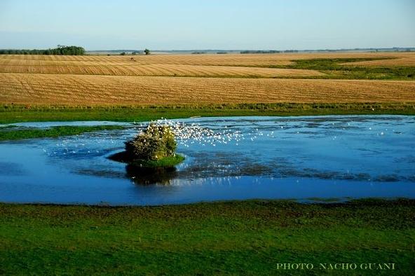 nacho guani lagunas del norte Imagenes del Uruguay Tomadas por el Fotógrafo Nacho Guani