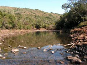 recursos naturales 300x225 Estancia Las Cañas Exclusivo de Caldeyro Victorica