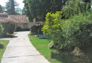 1174 Casas para Reformar en Carrasco