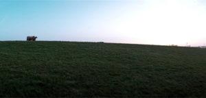 campo en uruguay 300x143 6 Elementos Básicos para Evaluar un Campo en Uruguay
