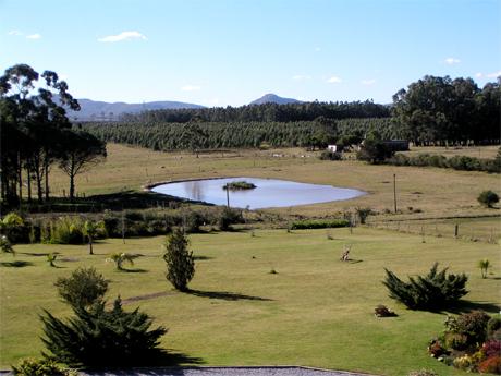 Campos en Uruguay