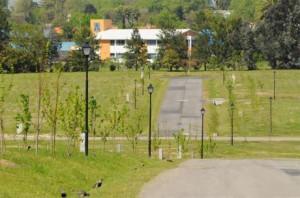 los olivos 02 300x198 Barrios Jardín: Los Olivos