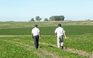 venta campos agricolas uruguay Fondos Continúan Apostando a Tierras Uruguayas. Caldeyro Victorica los Asesora